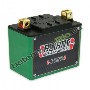 Bateria de Litio ALIANT YLP12